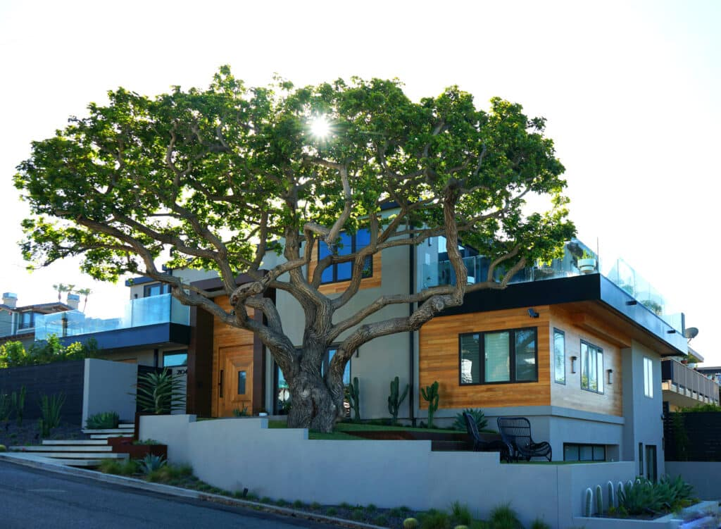 indoteak design-san diego-luxury-home-reclaimed-teak-wood-cladding